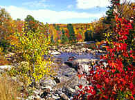 a page about the  'Indian Summer' in Maine, USA