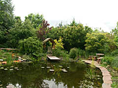 a garden with several ponds, with fish, waterlilies, dragon-flies etc.